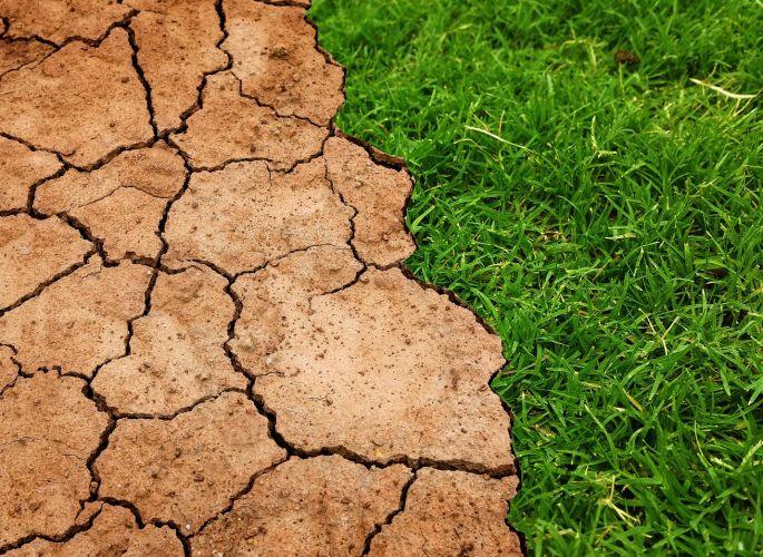 efecto del cambio climático